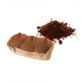 Bizcocho PlumCake Cacao Start FeelingOk 45g
