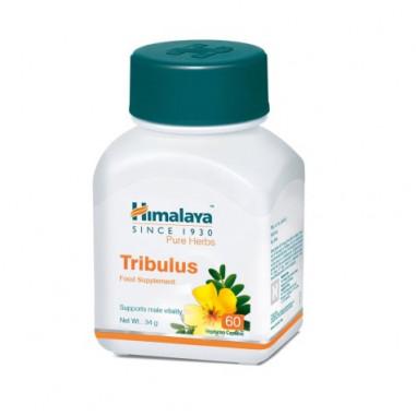 Tribulus (Gokshura) Himalaya 60 gélules
