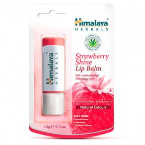 Baume à lèvres fraise brillant Himalaya 4,5g