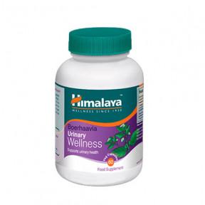 Boerhaavia Himalaya bien-être urinaire 60 gélules