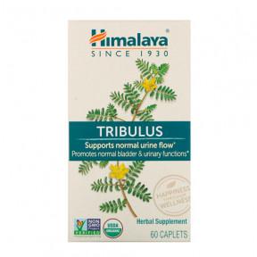 Tribulus Himalaia 60 cápsulas